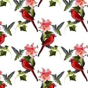 Hummingbird and Cardinal with Pink Lily and Ivy on White