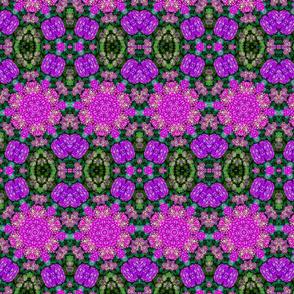 Hydrangeas Kaleidoscope