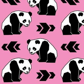 Panda with Pink Background