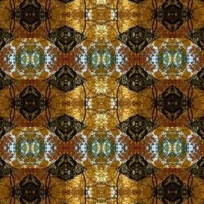 Pattern of a birch photo