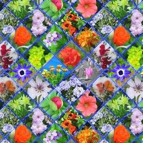 Blue Geometric Photographic Flowers