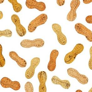 Boiled Peanuts