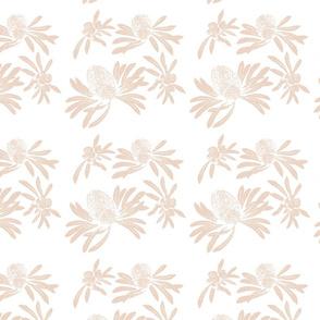 banksia floral - blush/white
