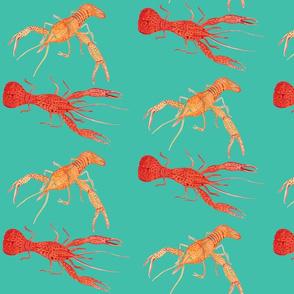 Crawfish - Teal