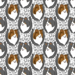 Shetland sheepdog horseshoe portraits