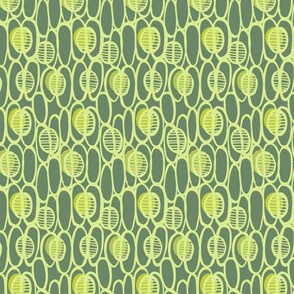 seed_pods_gray_green