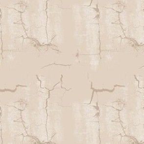 Beige Cracks Texture