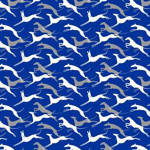 jumping greyhounds blue