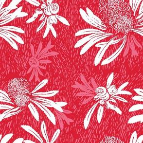 banksia bark - red/white