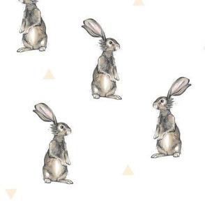 Rabbits + Triangles on White