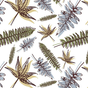 Scattered Ferns