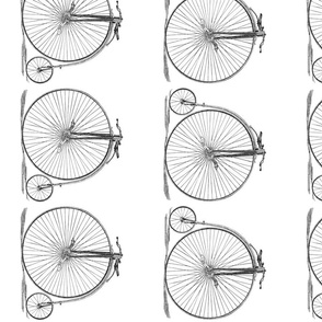Danita's High Wheel Bicycle ~ For Stairs