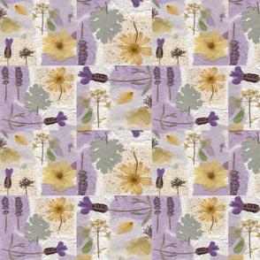 Spanish lavender squares