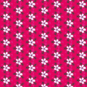 Magenta Sakura Ladybug