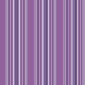 Hyacinth Purple Stripe © 2009 Gingezel Inc.