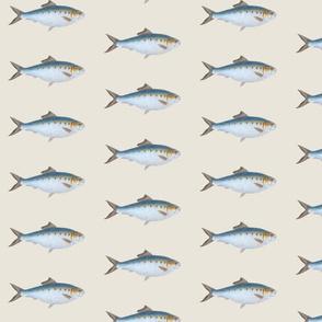 Go Go Fish 2