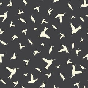 Hummingbirds on dark grey 2