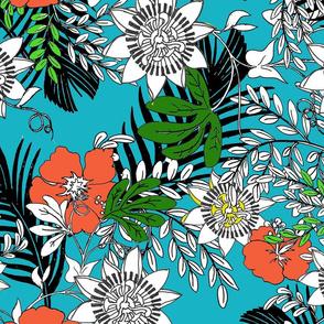 tropics_color