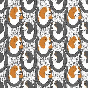 Basset hound horseshoe portraits