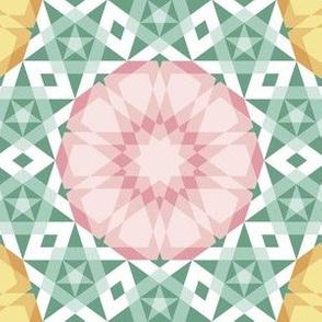 05262278 : UA5Vplus : springcolors