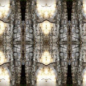 bark lantern stripes
