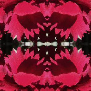 warholesque carnations largescale stripe