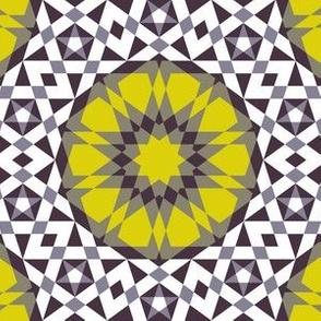 05279314 : UA5Vplus : spoonflower0197