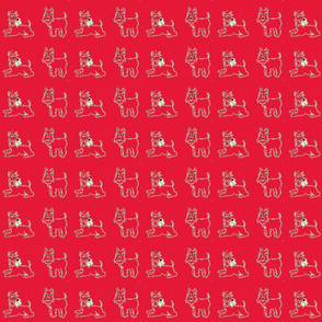 Miniature Schnauzer Puppy on Red