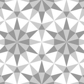 05280650 : SC3EE4r : greyscale