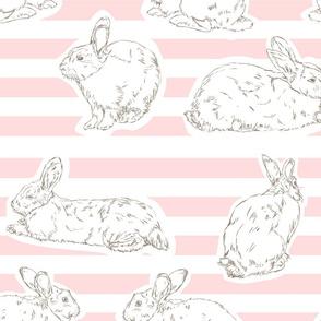 Pink Bunny Pattern