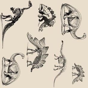 Vintage Dinosaur Skeletons on Cream  (Sideways Version)