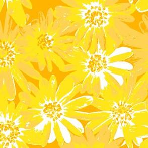 dotgold anenomes