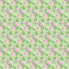 Lilypad4