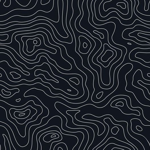 Mapping Contours, Ocean Depth Map, Map Black and White