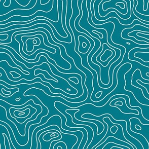 Mapping Contours, Ocean Depth Map, Map Teal and White