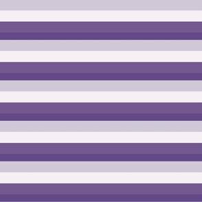 Bold Horizontal Purple Stripe