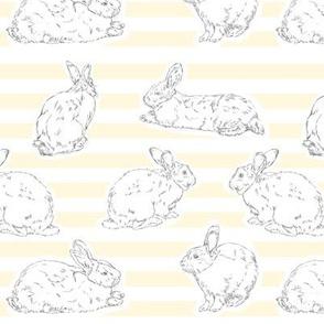 Yellow Bunny Pattern