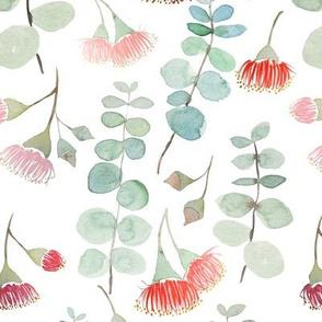 Watercolour eucalyptus silver