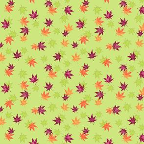 Kaede Ha (Maple Leaf)