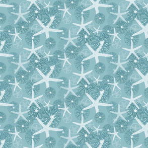 Sea Urchins, Starfish & Sand Dollars in White & Gray/Blue