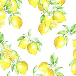5307041-when-life-gives-you-lemons-by-historyinhighheels