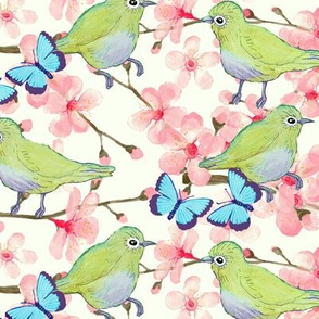 cherry blossom with Japanese birds