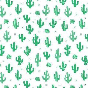 Raw western indian summer cactus garden green