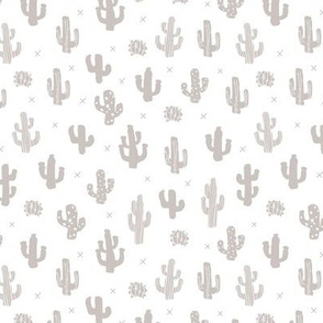 Raw western indian summer cactus garden gray