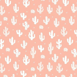 Raw western indian summer cactus garden peach pink