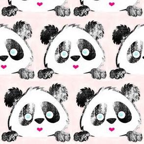 Panda Love Grunge on Pink