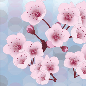 Tranquil Japanese Cherry Blossoms