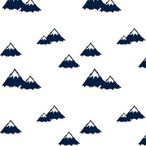 Mountains // Navy