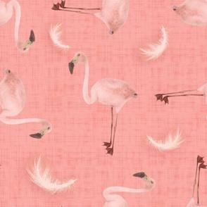 Flamingo&Feather