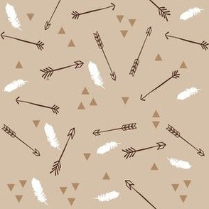 Arrows with Feathers and Triangles